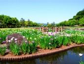 東郷湖はわい臨海公園