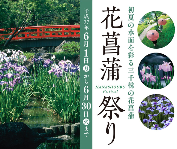 【由志園】花菖蒲祭り 6月1日(月)から6月30日(火)まで