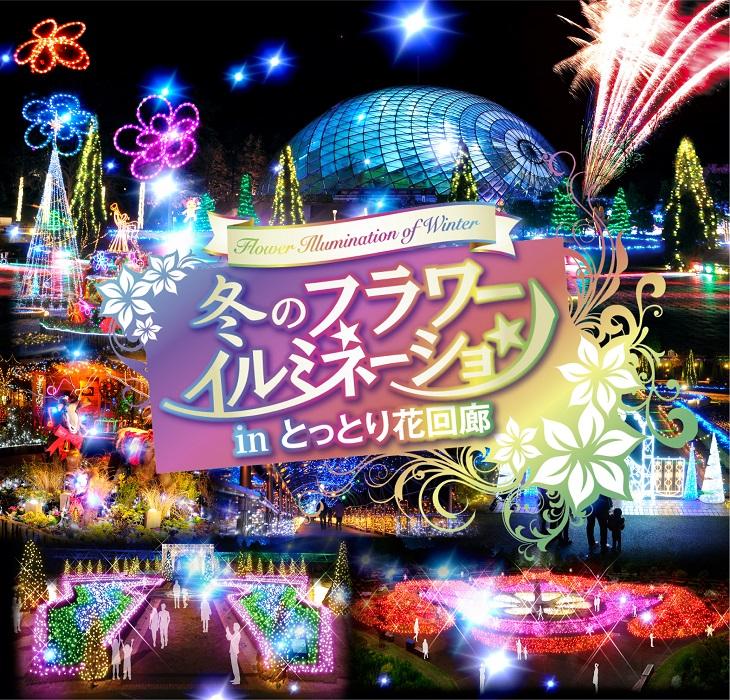 【とっとり花回廊】冬のフラワーイルミネーション!!