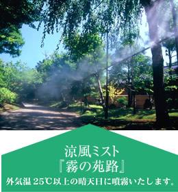 natuzashiki7-3