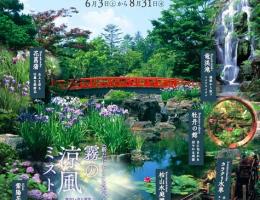 由志園♪ 霧の日本庭園 開催中!!