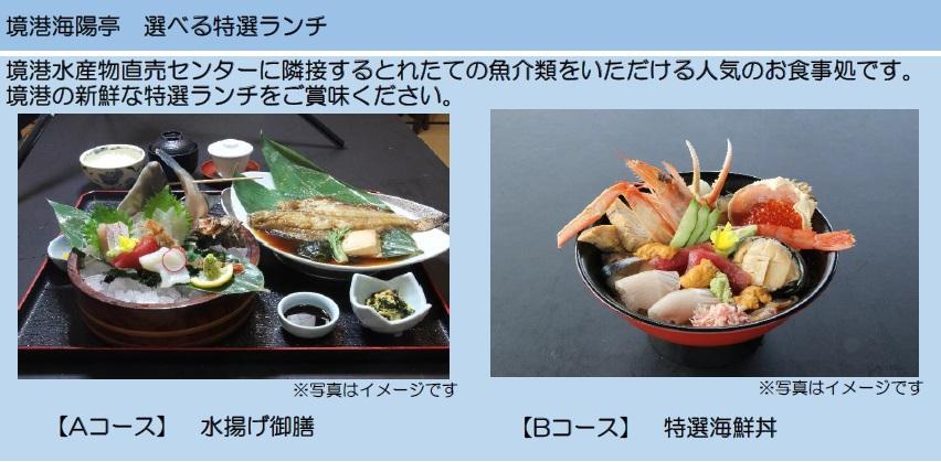 海鮮ランチ2