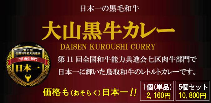 空港オンラインショップでは、1箱2,000円の日本一のレトルトカレーを販売しています!