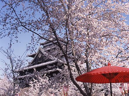 松江城 画像
