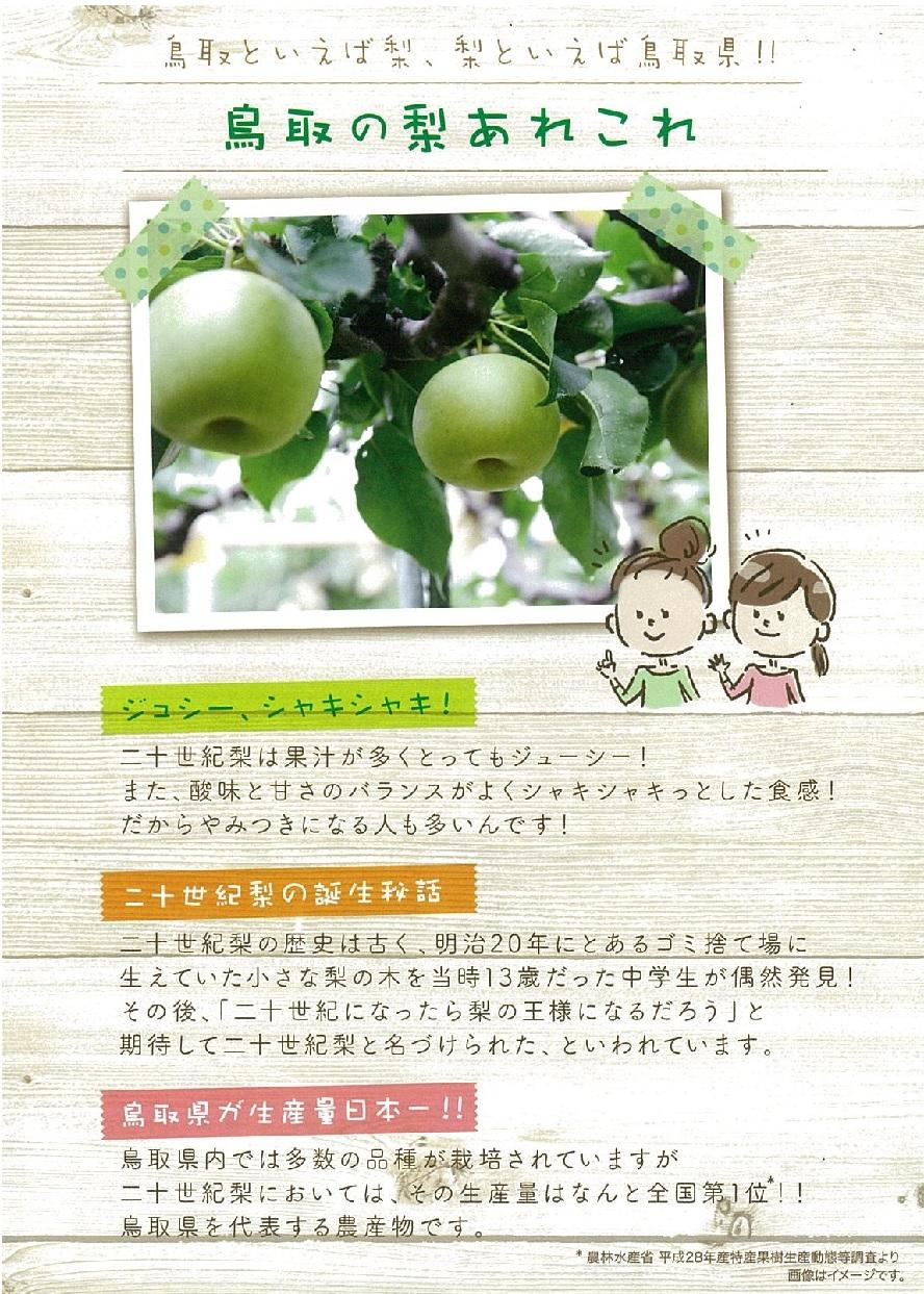 ラウンジ大山で『鳥取二十世紀梨フロマージュビスキュイ』☆試食キャンペーン☆!