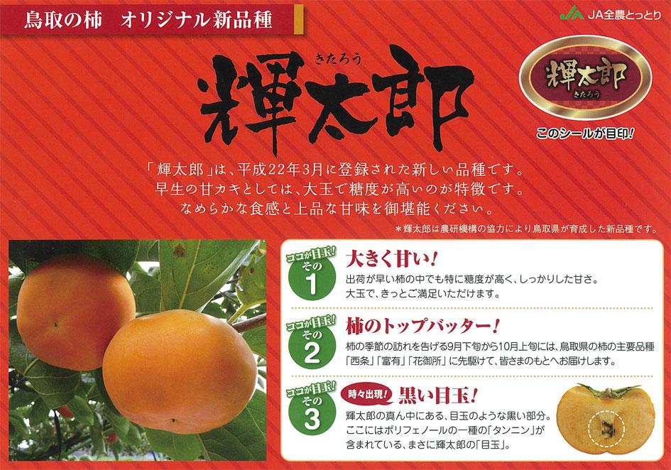 鳥取の甘柿『輝太郎』試食・販売会(JA全農とっとり)